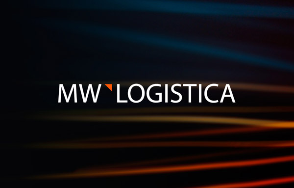 logistics logo guideline design