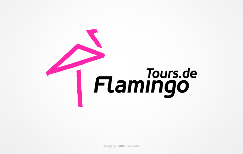 Logo Design Flamingo Tours agency design identity